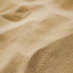 Caister Dog-Friendly Beach